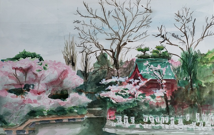 20170410_八幡宮トリミング