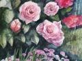 20170628_rose