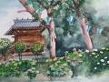 20170603_白山神社rev